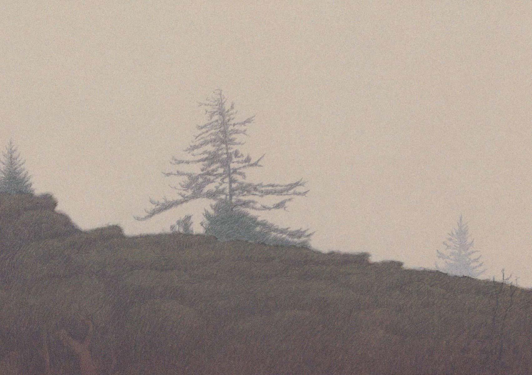 Chatham-Fog on Mt. Tamalpais
