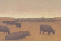Chatham-Winter Pasture